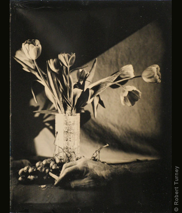 Avant-garde wet plate #8 by photographer Robert Turney