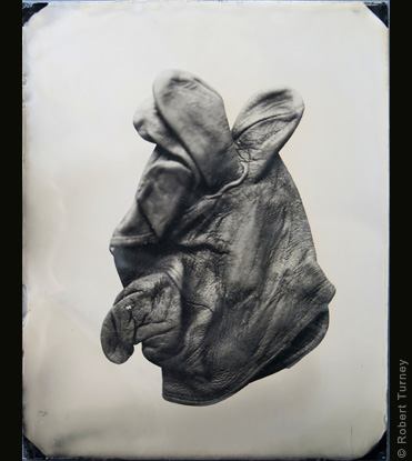 Glove 18 wet plate photo by photographer Robert Turney