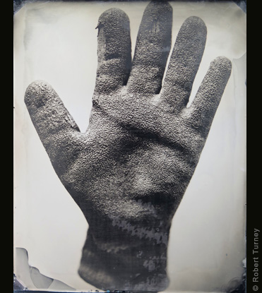 Glove 19 wet plate photo by photographer Robert Turney