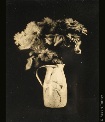 Still Life Portfolio of wet-plates by Photographer Robert Turney
