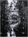 Photographer Robert Turney Gelatin Silver portfolio titled Looking Glass River